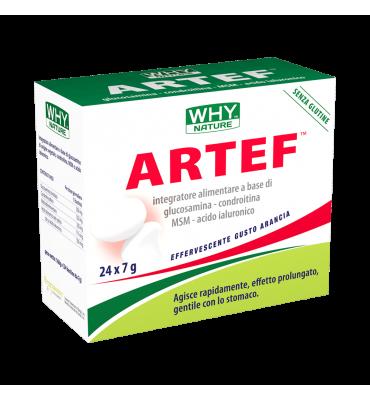Why - Artef 24x7g